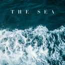 The Sea (feat. Jon Bryant)/Lily Kershaw