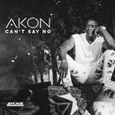 Can't Say No/Akon