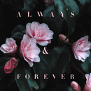 Always & Forever/Lily Kershaw
