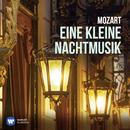Eine kleine Nachtmusik/Nikolaus Harnoncourt