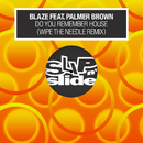 Do You Remember House? (feat. Palmer Brown) [Wipe the Needle Remixes]/Blaze