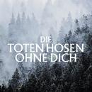 Ohne Dich (Ohne Strom)/Die Toten Hosen