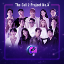 The Call 2 Project, No.3/Various Artists