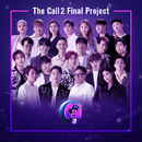 The Call 2 Project, Final/Various Artists