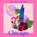 Big Beat Ignition: Chicago/Various Artists