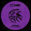 Destiny (feat. Camden Cox)/Kydus