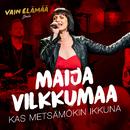 Kas metsämökin ikkuna (Vain elämää joulu)/Maija Vilkkumaa