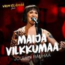 Joulun rauhaa (Vain elämää joulu)/Maija Vilkkumaa