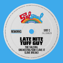Ooh I Love It (Love Break) [Late Nite Tuff Guy Reworks]/The Salsoul Orchestra