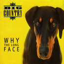 Why the Long Face (Bonus Tracks & Demos)/Big Country