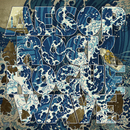 Rogue Wave/Aesop Rock