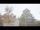 大阪SOUL/コブクロ
