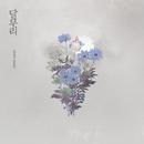 Moon Halo/So Hee Song