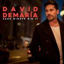 Cada minuto sin ti/David Demaria