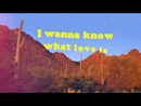 I Want To Know What Love Is (BLOND:ISH Sunrise Jungle Rework)/Foreigner