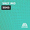 2045/Valy Mo