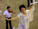 Flutteringly Fly/Wang Chih-Lei