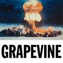 Grapevine/Tiësto