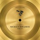 Feel It/Niceguy Soulman
