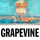 Grapevine (The Remixes)/Tiësto