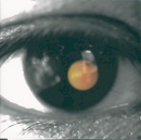 Black Tangerine/David Tao