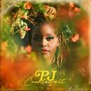 Counterfeit/PJ