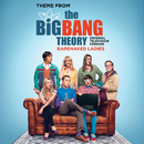 Theme From The Big Bang Theory (Original Television Version)/Barenaked Ladies