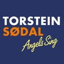 Angels Sing/Torstein Sødal