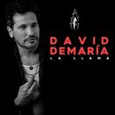 La llama/David Demaria