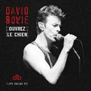 Ouvrez Le Chien (Live Dallas 95)/David Bowie