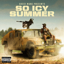 Gucci Mane Presents: So Icy Summer/Gucci Mane