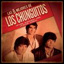 Las 5 mejores/Los Chunguitos