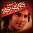 Las 5 mejores/Miguel Gallardo
