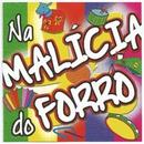 Na Malícia do Forró/Varios Artistas