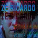 Vários em Um/Zé Ricardo