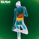 The Kingdom/Bush