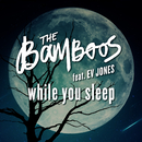 While You Sleep (feat. Ev Jones)/The Bamboos