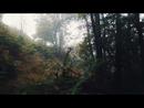 El Bosque (feat. Denise Rosenthal)/Fuel Fandango
