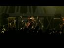 The Blinding (Live At The S.E.C.C.)/Babyshambles