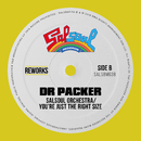You're Just The Right Size (Dr Packer Rework)/The Salsoul Orchestra