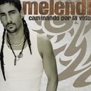 Caminando Por La Vida [USA Release]/Melendi