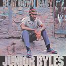 Beat Down Babylon (Expanded Version)/Junior Byles