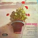 Cañones de artillería/Manolo Vargas