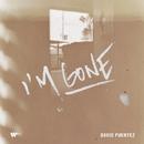 I'm Gone/David Puentez
