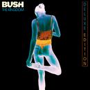 The Kingdom (Deluxe)/Bush