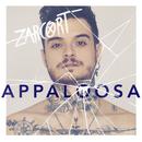 Appaloosa/Zarcort