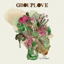 Wildflowers/Grouplove