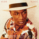 Wherever You Go (DJ Ganyani & De Mogul SA Remix)/Aloe Blacc