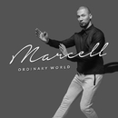 Ordinary World/Marcell
