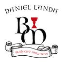 Blanický manifest/Daniel Landa